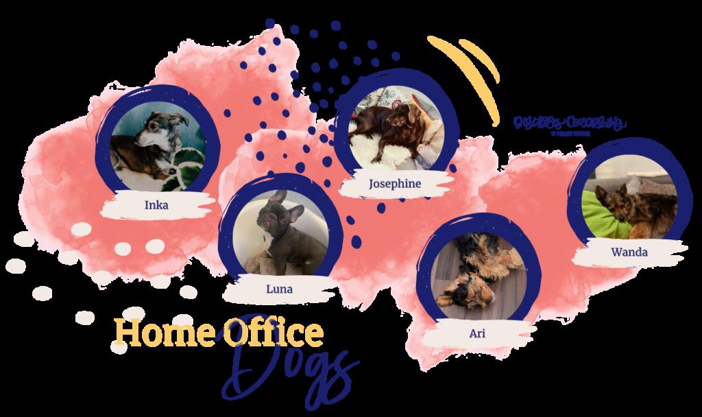 Digitales Coworking - Bürohunde